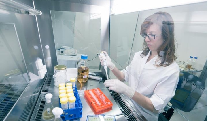 Researcher grafting bacteria in petri dishes in lab, preparing them for cold storage